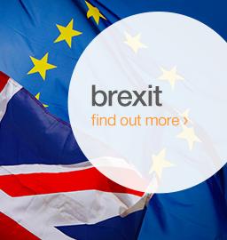 brexit information